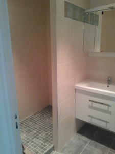 wp_000231-225x300 salle de bain